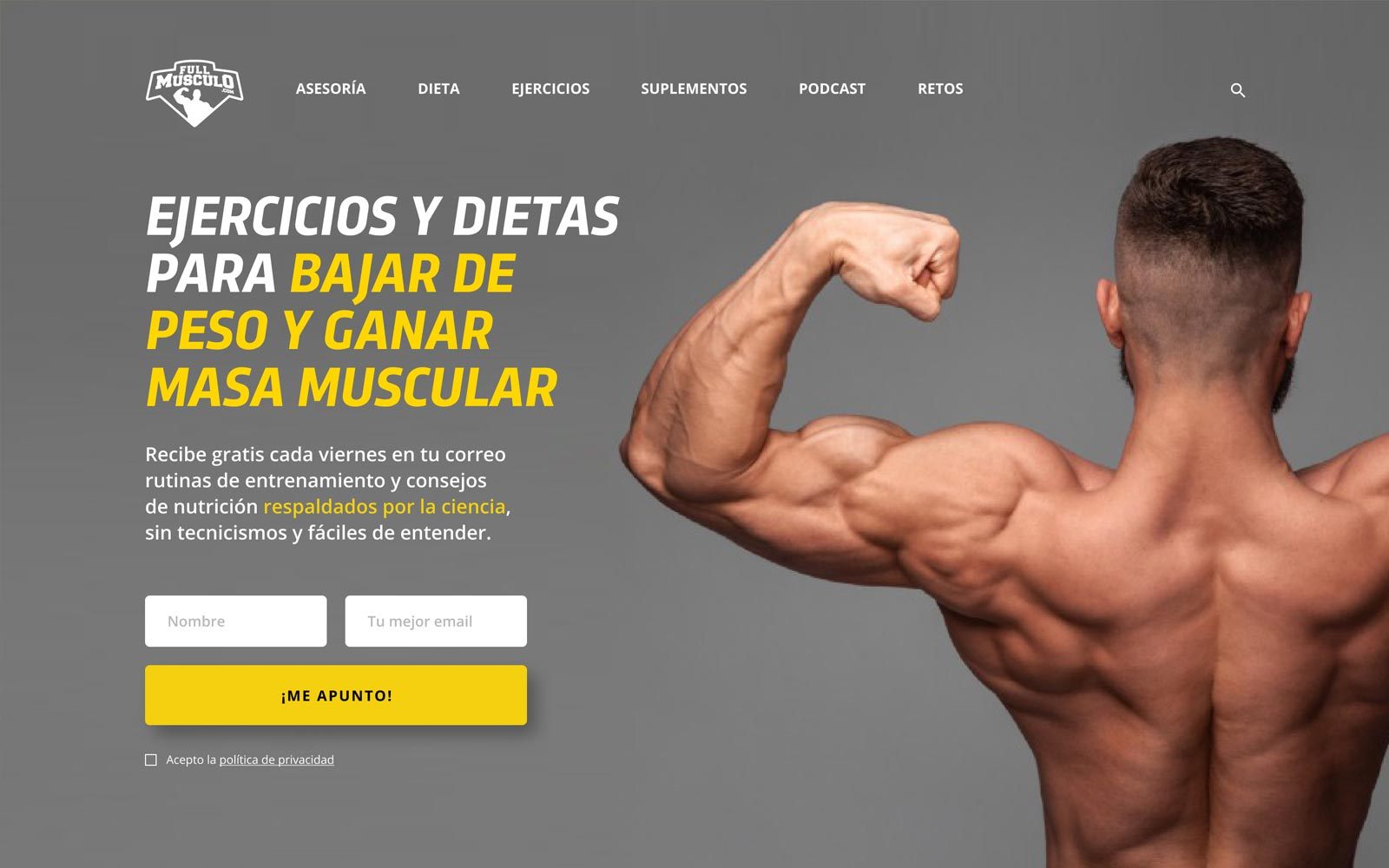 02-FULL-MUSCULO